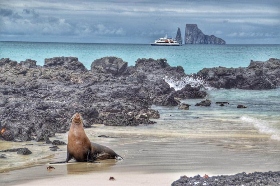 Snorkeling in the Galapagos Islands with Ecoventura