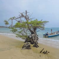 pascina-beach-i-tayrona-national-park-i-cololmbia_