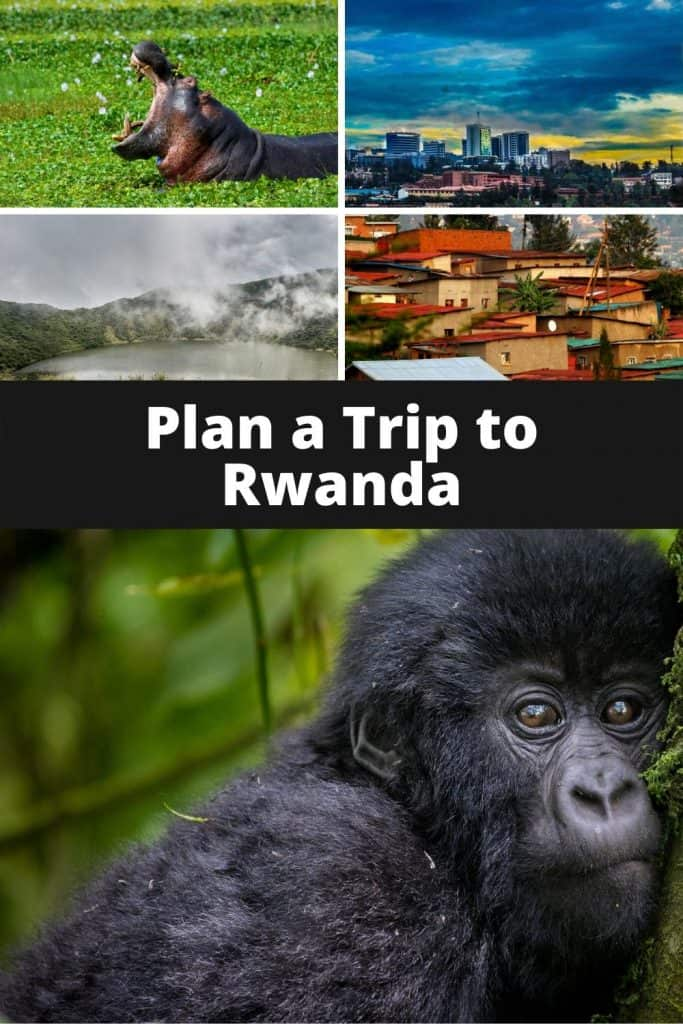 Rwanda is relatively off the beaten path for most American travelers, and there's a lot of amazing ecotourism attractions beyond following Dian Fossey's footsteps and trekking with gorillas in Volcanos National Park. #africa #rwanda #gorillas #nature #wildlife #whereelsetogo